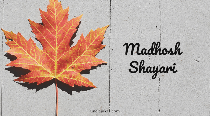 Madhosh Shayari Feature Image